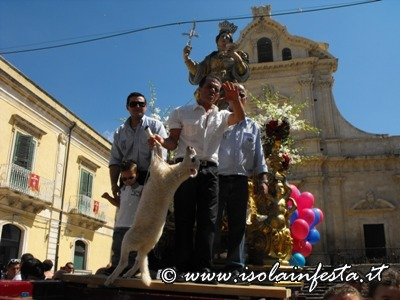 ssofia2011-sortino-40