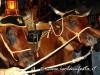gesunazzareno2012-sangiovannigemini-35